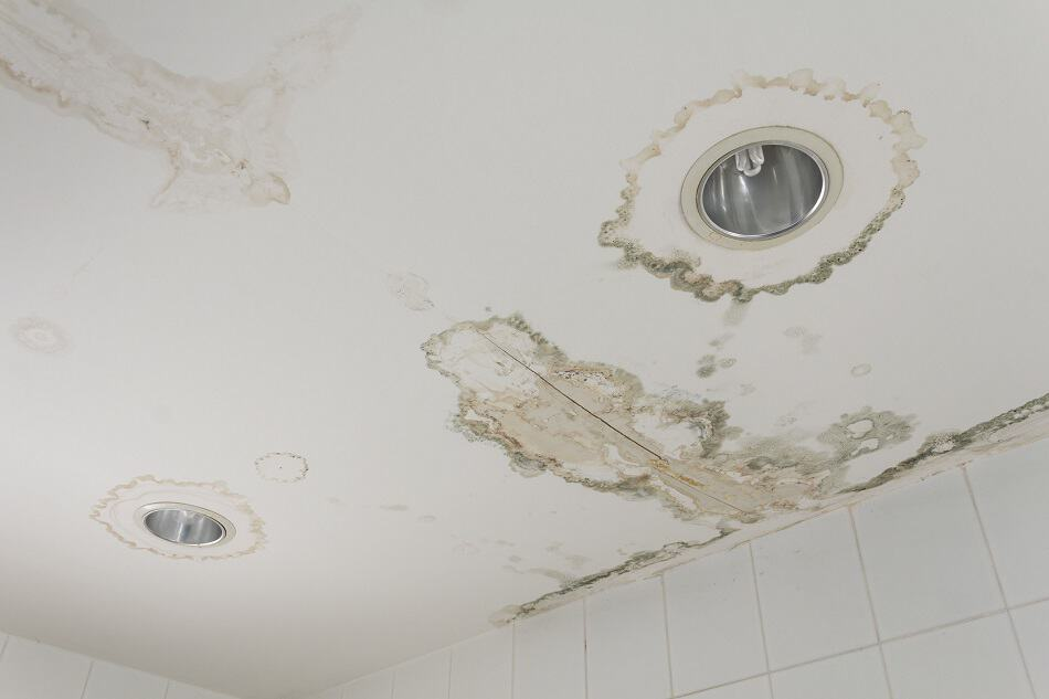 3 Common Ceiling Stains Their Causes With Removal Tips